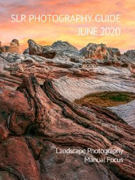 SLR Photography Guide - June Edition 2020