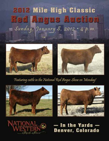 2012 Mile High Classic Red Angus Auction - National Western Stock ...