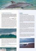 Ship Strike - OceanCare - Seite 6