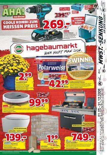 hagebaumarkt Schneider Beilage 25/20 I PR, WA, FR, PI, BR, VI, BT, DO