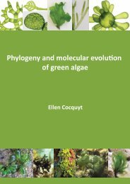 Phylogeny and molecular evolution of green algae - Phycology ...