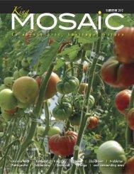 Layout 1 - King MOSAiC