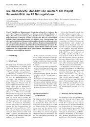 Die mechanische Stabilität von Bäumen: das Projekt Baumstabilität ...