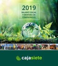Balance Social y Memoria de Compromisos 2019