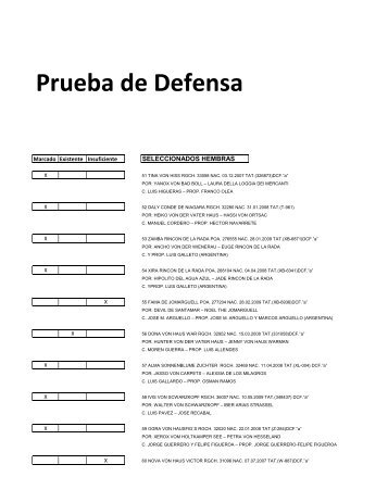 Prueba de Defensa - Chilcoa