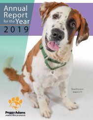 Peggy Adams Animal Rescue League 2019 Annual Report