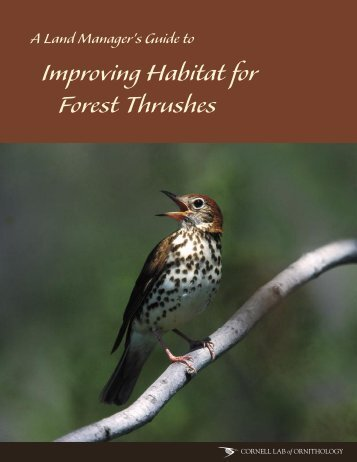 A Land Manager's Guide to Improving Habitat for Forest Thrushes