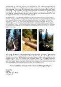 Handholzerei - Bergwaldprojekt - Seite 4