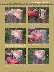 Leseprobe - Holzwerken