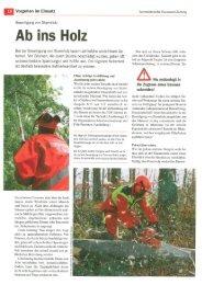 Beseitigung von Sturmholz