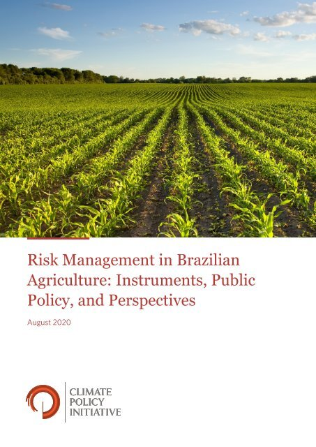 Report - Risk Management in Brazilian Agriculture