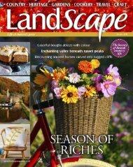LandScape Oct 2020
