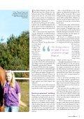 Springhesteavl på internationale linjer - Stald Hummel - Page 2