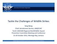 Why?: 1. Increasing populations of large- and flocking- bird ... - ICAO
