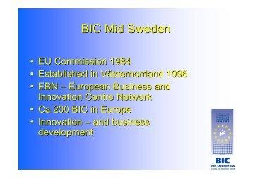 8. SamInvest - jako instrument wspierania rozwoju sektora MSP na ...