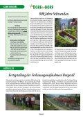DORF DORF - Gemeinde Hippach - Seite 6
