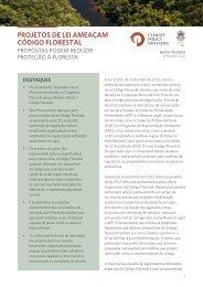 Projetos de lei ameaçam Código Florestal: propostas podem reduzir proteção à floresta