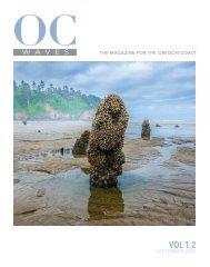 Oregon Coast Waves - VOL 1.2