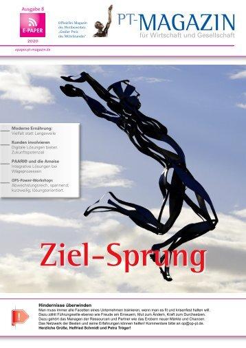 E-Paper 08 Ziel-Sprung