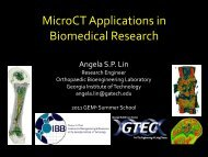 Utilizing Micro-CT in Biomedical Research - 2011 GEM4 Summer ...