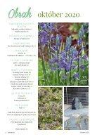 Časopis ZÁHRADA 07/2020 - Page 4