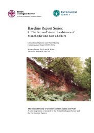 8. The Permo-Triassic Sandstones of Manchester and East Cheshire