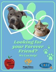 Getting A Pet Activity Book