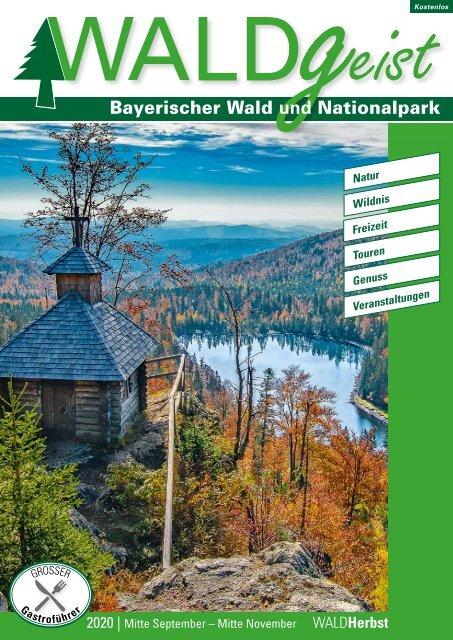 Waldgeist Herbst 2020