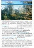 Sehens- und erlebenswert - Stadt Mechernich - Seite 6