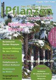 GREEN24 Pflanzenmagazin Nr.4