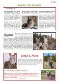 Mit Herz und Pfote - Achtung für Tiere - Seite 3