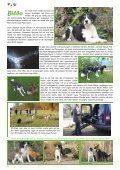 Mit Herz und Pfote - Achtung für Tiere - Seite 4