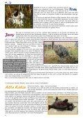 Mit Herz und Pfote - Achtung für Tiere - Seite 6