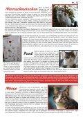 Mit Herz und Pfote - Achtung für Tiere - Seite 7