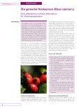 Die gemeine Heckenrose (Rosa canina L) – Eine ... - OM & Ernährung - Seite 2