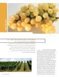 Weinzeit befragte zwei - Steirischer Wein / Die Marktgemeinschaft ... - Seite 6