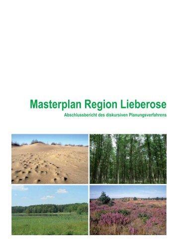 Masterplan Region Lieberose Abschlussbericht des diskursiven - INA