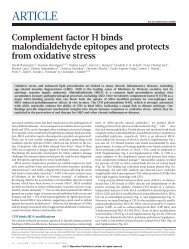 Complement factor H binds malondialdehyde epitopes and ... - Cemm