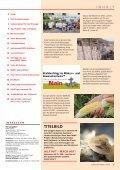 schwyzer panda - WWF Schwyz - Seite 3
