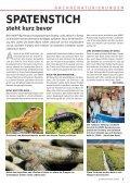 schwyzer panda - WWF Schwyz - Seite 5