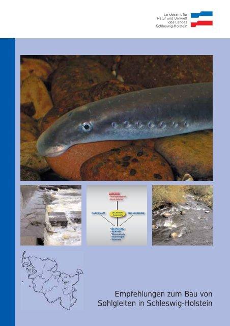 Empfehlungen zum Bau von Sohlgleiten in Schleswig-Holstein