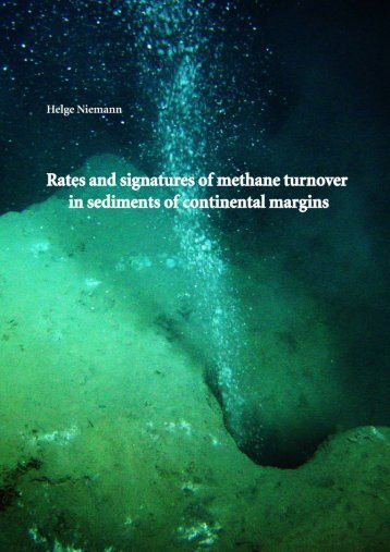 Rates and signatures of methane turnover in sediments
