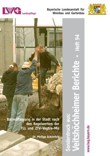 Baumpflanzung in der Stadt nach den Regelwerken der FLL und ...