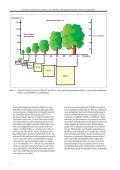 Baumpflanzung in der Stadt nach den Regelwerken der FLL und ... - Seite 4