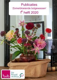 Publicaties Broei Zomer 1e helft 2020