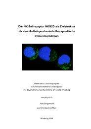 080910 Doktorarbeit final - OPUS - Universität Würzburg