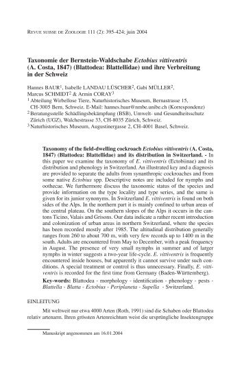 Taxonomie der Bernstein-Waldschabe Ectobius vittiventris (A. Costa ...