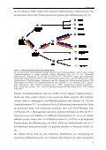 Untersuchung von Zinksignalen während Aktivierung und Reifung in ... - Seite 7