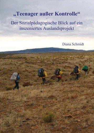 Diplomarbeit Schmidt - Psychologie der Universität Siegen
