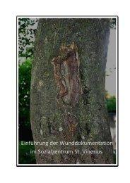 Weiterbildung Wundmanager 2011 - Wundmanagement Tirol